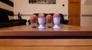 【本物の卵はどれ?】世界で最も過酷な国イタリアの友人から送られた動画が話題に!