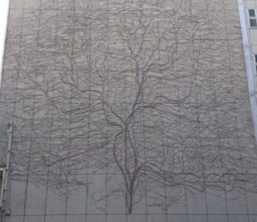 【新潟 巨大アート】ツタが芸術的に生えたビル(建物)の場所は?ナニコレ珍百景で紹介されたマンションが再度twitterで話題に